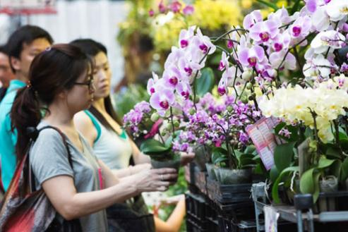 Another custom for the New Year's Eve is to go to the Flower Market - Photo: istockphoto.com